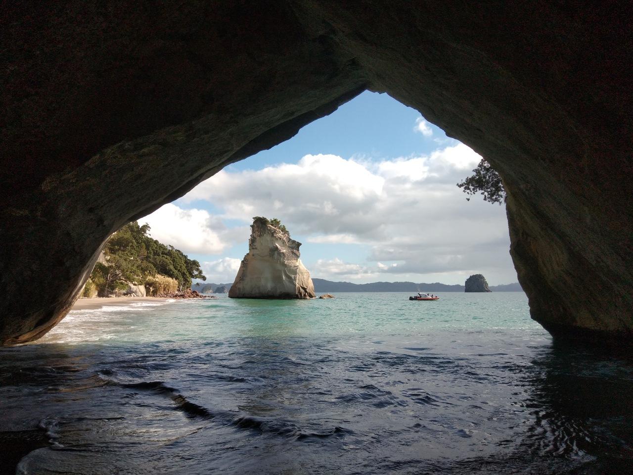 NEW ZEALAND (4)