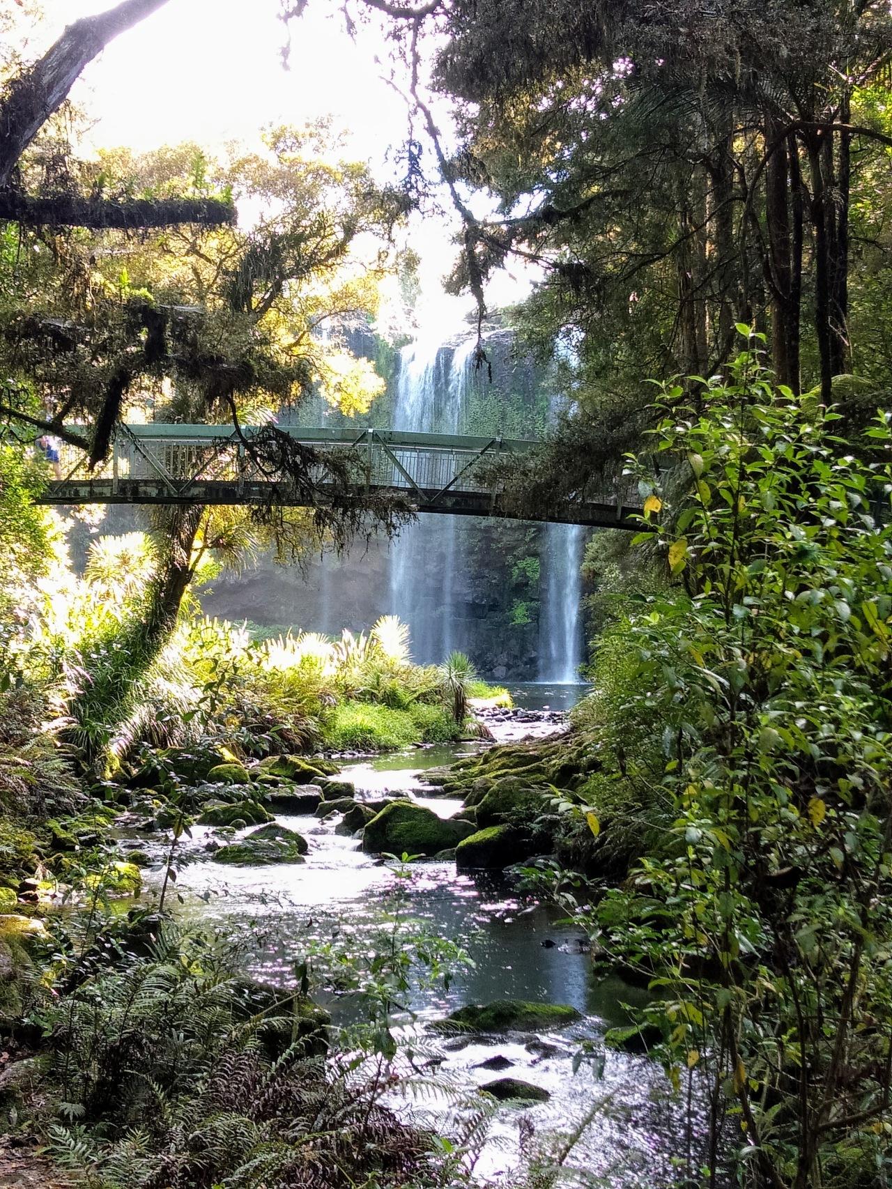 NEW ZEALAND (9)