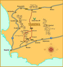 TANKWA CAMINO – INTRODUCTION