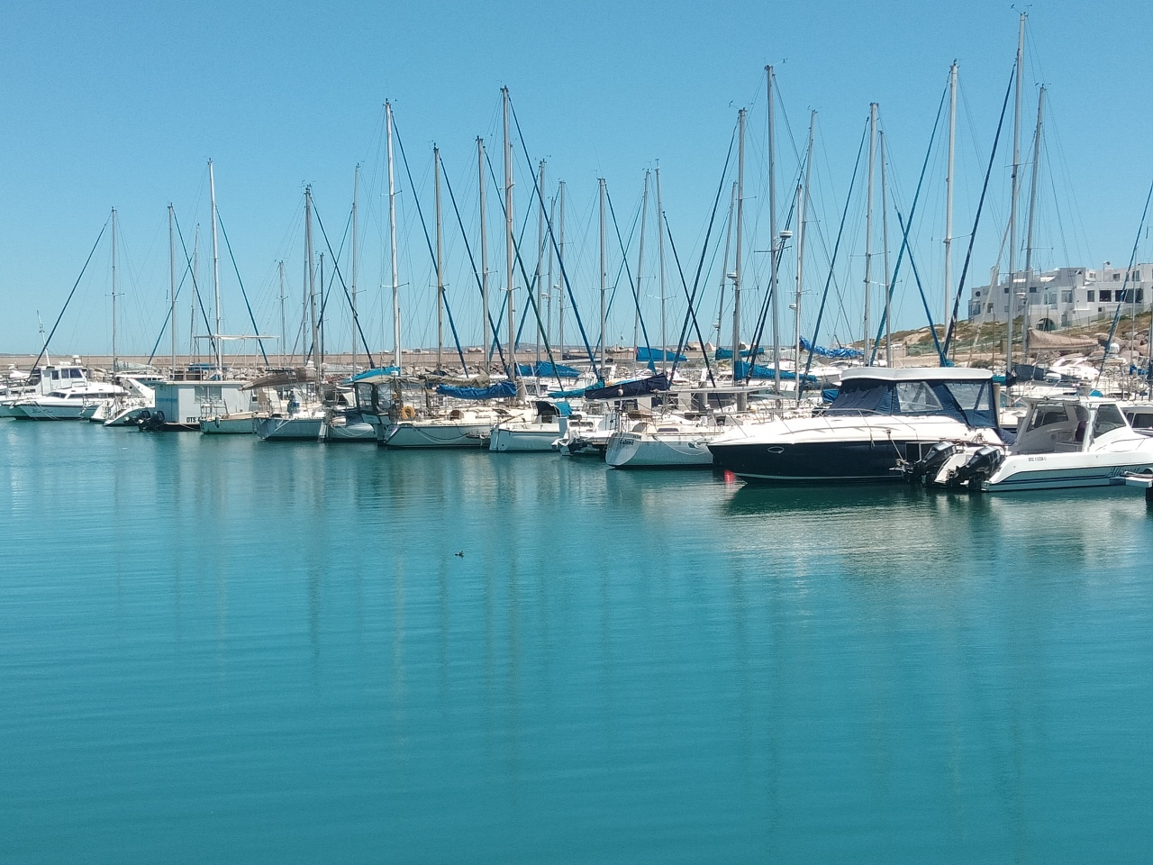 Nr 4 of … 10 FUN THINGS TO DO IN LANGEBAAN (South Africa)